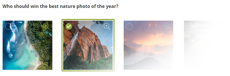 New Question Type: Image Choice