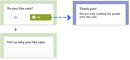 Survey Redirection with Skip Logic